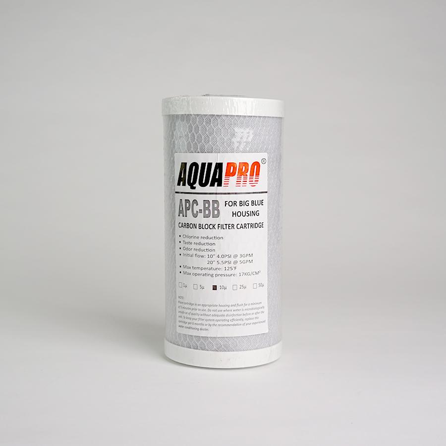 APC 빅 카본블록필터(CTO) 250mm
